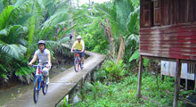 Cycle Bangkok Jungle Thumbnail Picture